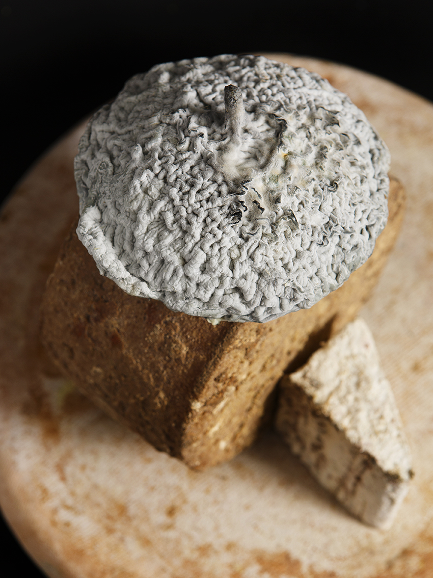 Saveurs fromageres, Fromages d'exception. Laurent Dubois, MoF Fromager 2000. ©Alban Couturier
